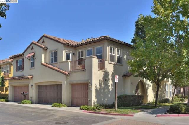 49114 Rose Ter, Fremont, CA 94539 (#40882844) :: Blue Line Property Group