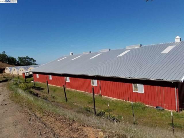 19019 Mines Rd, Livermore, CA 94550 (#40885365) :: Armario Venema Homes Real Estate Team