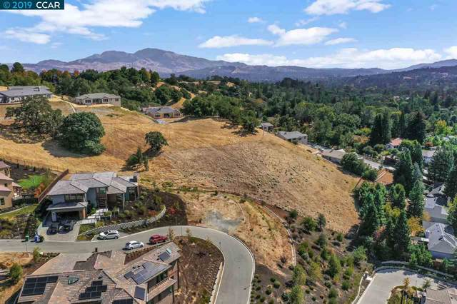 145 Arbor View Ln, Lafayette, CA 94549 (#40885767) :: Realty World Property Network