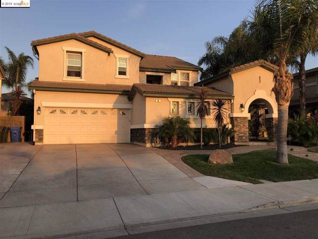 14 Dali Ct, Oakley, CA 94561 (#40885780) :: The Lucas Group