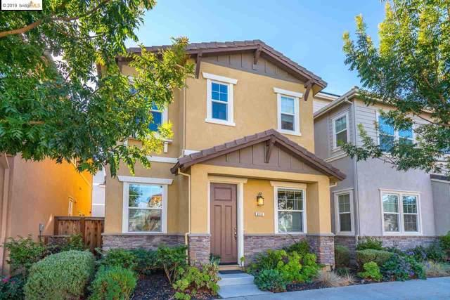 850 Fan Palm Ln, Brentwood, CA 94513 (#40886168) :: Blue Line Property Group