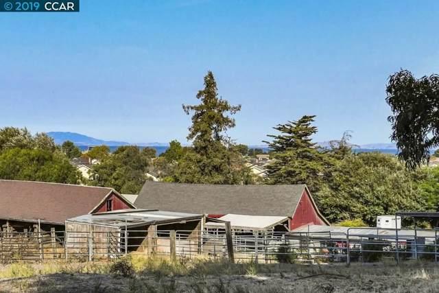 215 Skelly, Hercules, CA 94547 (#40886692) :: Armario Venema Homes Real Estate Team