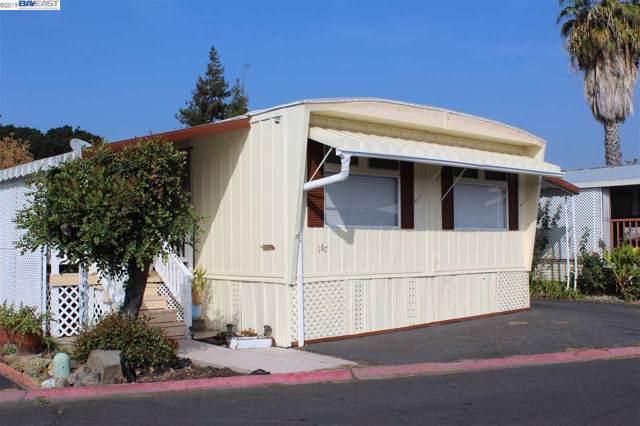 167 Neptune, Hayward, CA 94544 (#40888460) :: Armario Venema Homes Real Estate Team