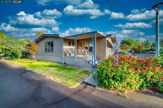 124 Banyon Dr, Pittsburg, CA 94565 (#40889983) :: Armario Venema Homes Real Estate Team