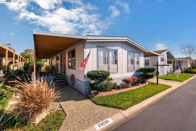 29230 Whalebone Way, Hayward, CA 94544 (#40893149) :: Armario Venema Homes Real Estate Team