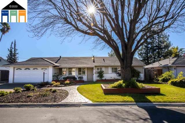 113 Vivian Dr, Pleasant Hill, CA 94523 (#40893493) :: Armario Venema Homes Real Estate Team