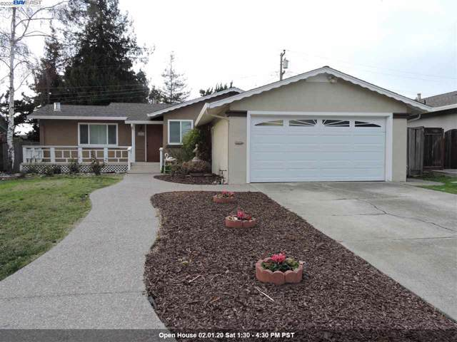 155 Camphor Ave, Fremont, CA 94539 (#40893630) :: Armario Venema Homes Real Estate Team