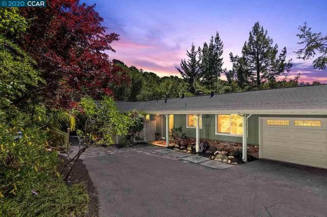 66 Tara Rd, Orinda, CA 94563 (#40903742) :: Armario Venema Homes Real Estate Team