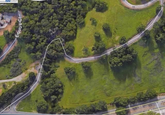 4108 Foothill Rd, Pleasanton, CA 94588 (#40904428) :: Armario Venema Homes Real Estate Team
