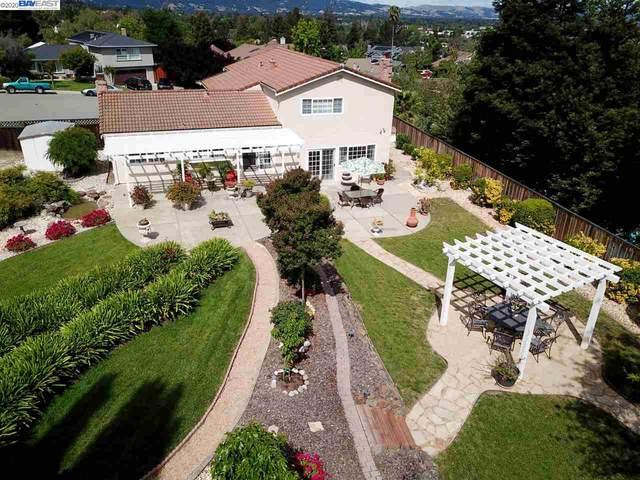 638 Marsala Ct, Pleasanton, CA 94566 (#40905230) :: Armario Venema Homes Real Estate Team