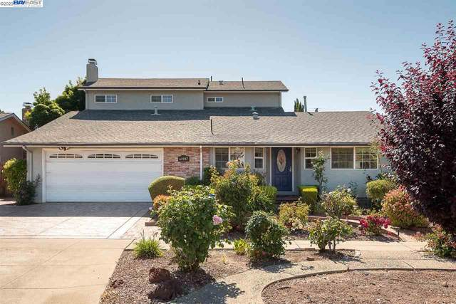 41987 Paseo Padre Pkwy, Fremont, CA 94539 (#40906098) :: Realty World Property Network
