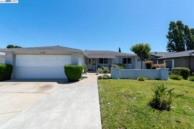 5569 Balt Ct, Fremont, CA 94538 (#40906114) :: Armario Venema Homes Real Estate Team