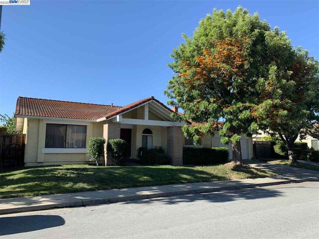 1976 Oro Drive, Fremont, CA 94539 (#40906146) :: Realty World Property Network