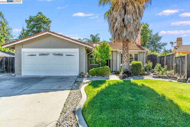 48825 Big Horn Ct, Fremont, CA 94539 (#40906347) :: Realty World Property Network
