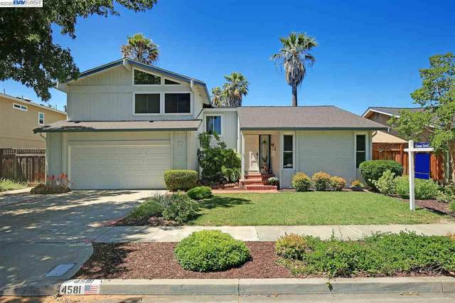4581 Shearwater Rd, Pleasanton, CA 94566 (#40907662) :: Armario Venema Homes Real Estate Team