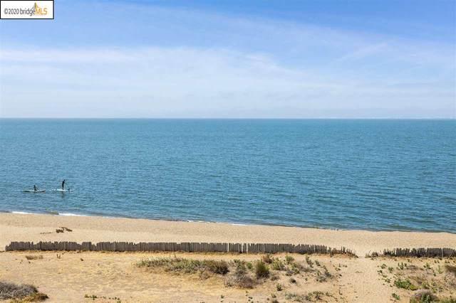 933 Shoreline Dr #401, Alameda, CA 94501 (#40910360) :: Armario Venema Homes Real Estate Team