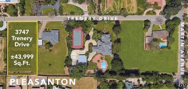3747 Trenery Dr, Pleasanton, CA 94588 (MLS #40911983) :: Paul Lopez Real Estate