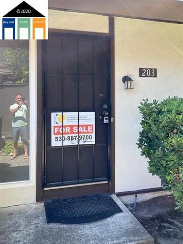203 Corte San Pablo, Fremont, CA 94539 (#40913161) :: Realty World Property Network