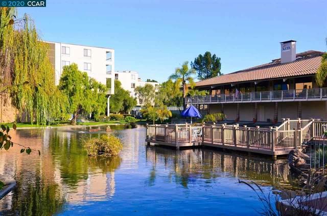 300 N Civic Dr #507, Walnut Creek, CA 94596 (#40914006) :: Realty World Property Network