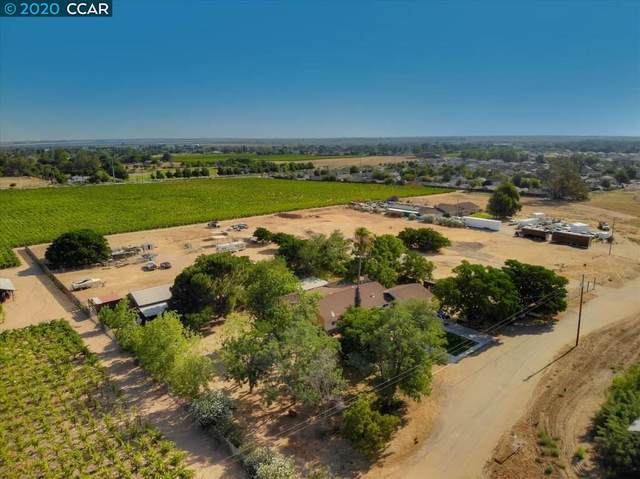 1171 Grapevine Ln, Oakley, CA 94561 (#40915468) :: Realty World Property Network
