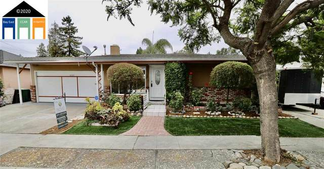 26014 Jane Ave, Hayward, CA 94544 (#40915684) :: Blue Line Property Group