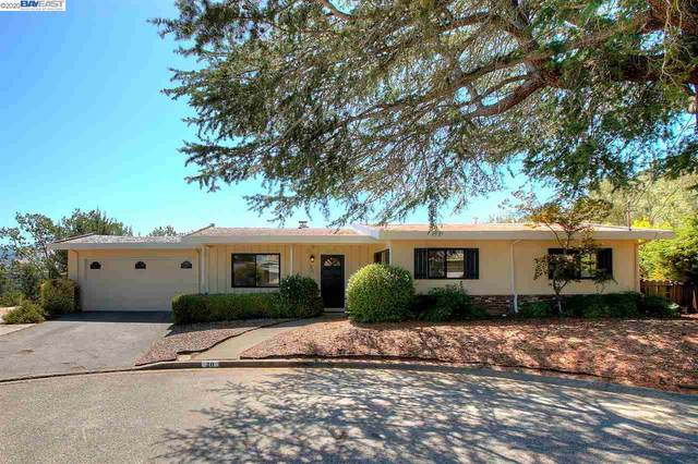 20 Raymond Ct, Walnut Creek, CA 94595 (#40915743) :: Armario Venema Homes Real Estate Team