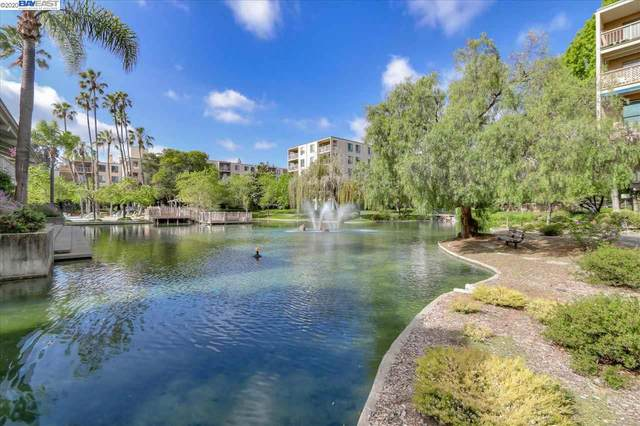 320 N Civic Dr #409, Walnut Creek, CA 94596 (#40918094) :: Blue Line Property Group