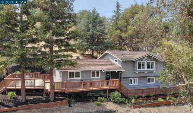 435 Summit Rd, Walnut Creek, CA 94598 (#40918904) :: Realty World Property Network