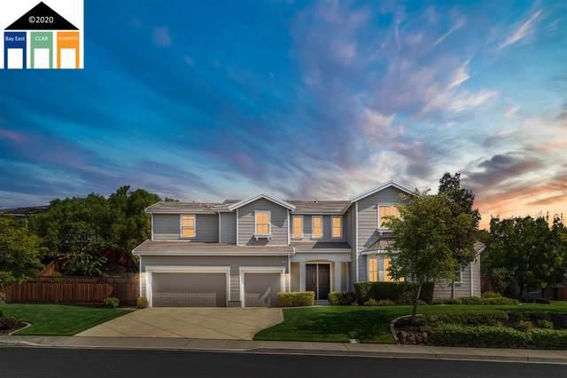 218 Napier Ct, Pleasanton, CA 94566 (#40919839) :: Armario Venema Homes Real Estate Team