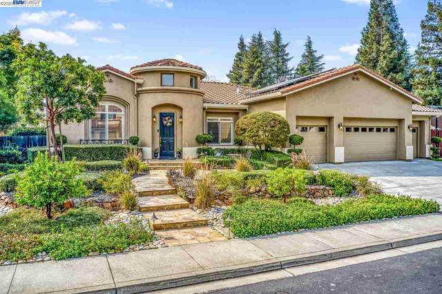 369 Call Of The Wild Way, Livermore, CA 94550 (#40919886) :: Blue Line Property Group