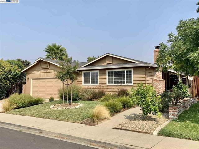 1080 Via Madrid, Livermore, CA 94550 (#40919899) :: Realty World Property Network