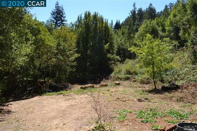 11190 Mc Peak Road, Forestville, CA 95436 (#40920416) :: Realty World Property Network