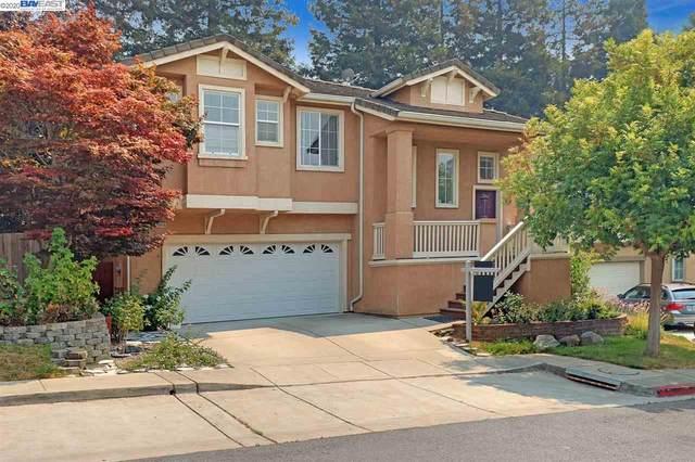 20010 Shadow Creek Cir, Castro Valley, CA 94552 (#40920561) :: Blue Line Property Group