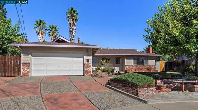 244 Paula Ct, Martinez, CA 94553 (#40920805) :: Realty World Property Network
