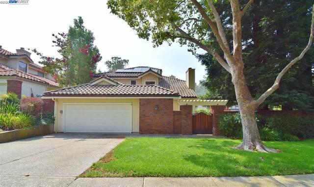 243 Live Oak Dr, Danville, CA 94506 (#40921213) :: Blue Line Property Group