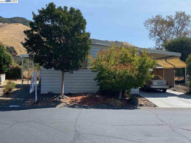 711 Old Canyon Rd #170, Fremont, CA 94538 (#40921517) :: Realty World Property Network