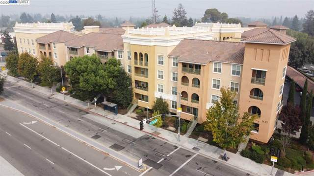 1445 Fruitdale Ave #309, San Jose, CA 95128 (#40922024) :: Realty World Property Network