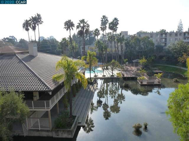 310 N Civic Drive #503, Walnut Creek, CA 94596 (#40922078) :: Realty World Property Network