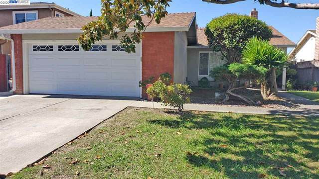 4664 Queen Anne Ct, Union City, CA 94587 (#40922310) :: Realty World Property Network