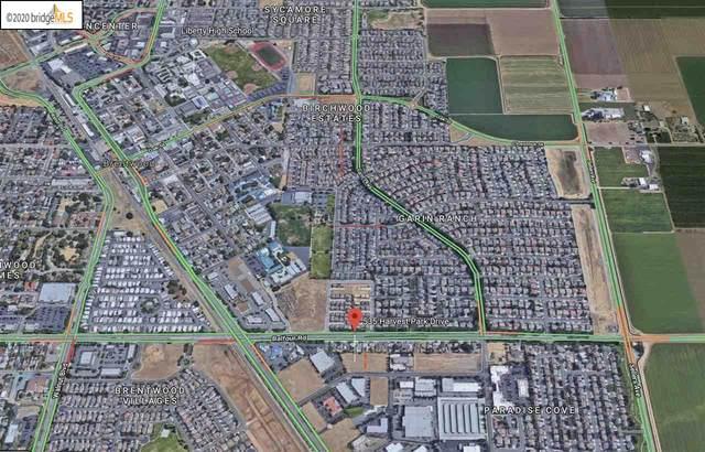 535 Harvest Park Dr, Brentwood, CA 94513 (#40922508) :: Blue Line Property Group