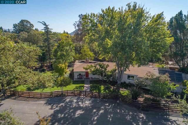 91 Grandview Place, Walnut Creek, CA 94595 (#40926447) :: Armario Venema Homes Real Estate Team