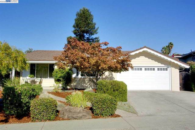 41920 Higgins Way, Fremont, CA 94539 (#40926451) :: Armario Venema Homes Real Estate Team