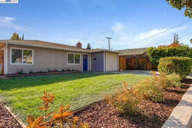 3510 Park Blvd, Palo Alto, CA 94306 (#40929404) :: Real Estate Experts