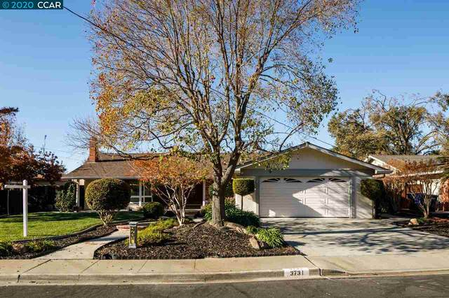 3731 Cottonwood Dr, Concord, CA 94519 (#40930447) :: Realty World Property Network