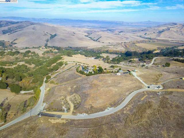 03 Shelly Ct, SAN JUAN BAUTISTA, CA 95045 (#40931517) :: Blue Line Property Group
