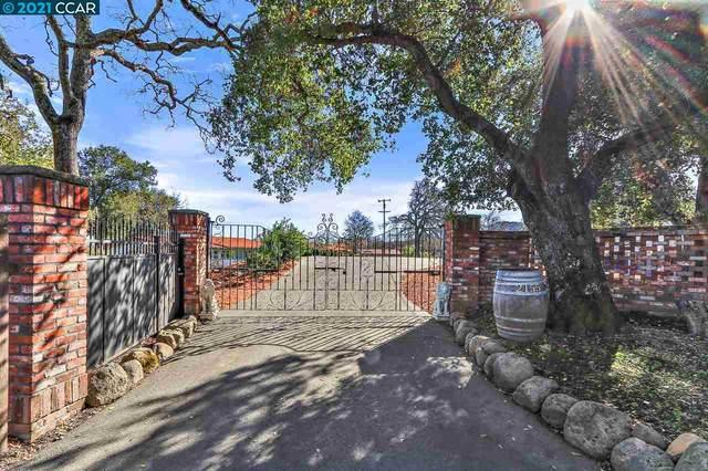 2155 Ridgewood Rd, Alamo, CA 94507 (#40934470) :: Realty World Property Network