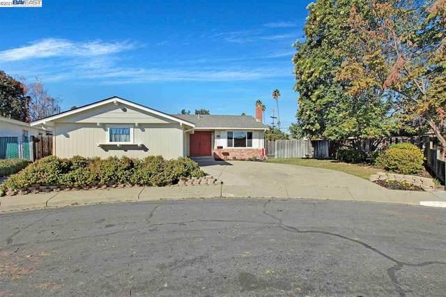 5493 Roosevelt Pl, Fremont, CA 94538 (#40935110) :: The Grubb Company