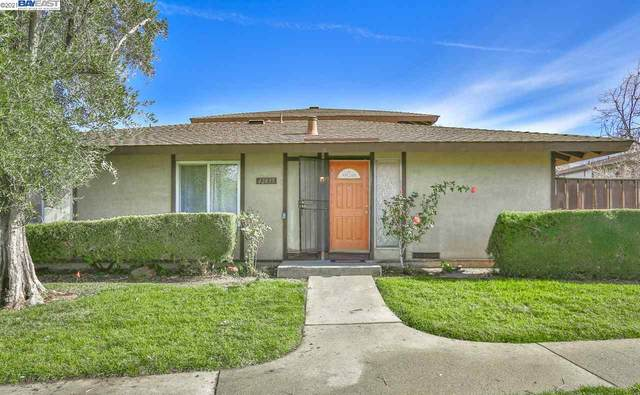 Fremont, CA 94539 :: Blue Line Property Group