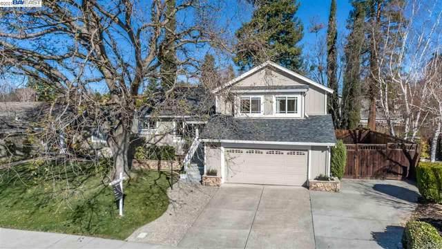 4735 Mchenry Gate Way, Pleasanton, CA 94566 (#40935406) :: Realty World Property Network