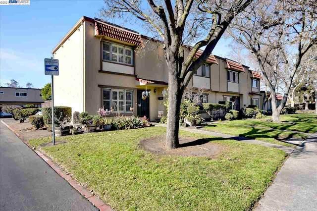 27587 Del Norte Ct, Hayward, CA 94545 (#40935421) :: J. Rockcliff Realtors